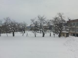 中越雪.jpg
