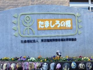 image/2014-11-27T20:47:56-1.JPG