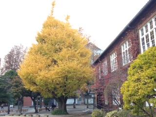 image/2014-11-28T18:45:16-1.JPG