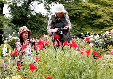 花を撮る.png